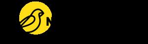 NANOSentinel