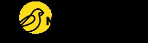 NANOSentinel Logo with Wordmark